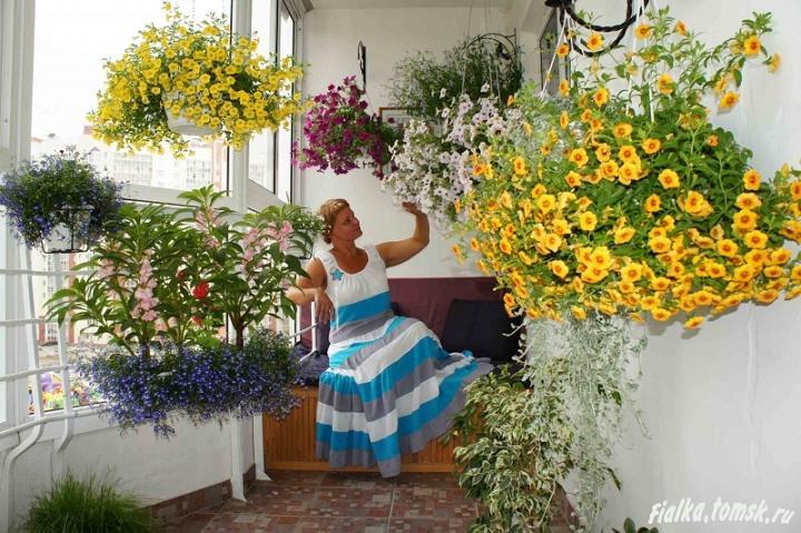 Цветы и растения на балконе.